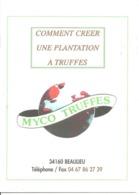 Comment Créer Une Plantation à Truffes Myco Truffes Champignon Truffe Tartufo Trufficulture Beaulieu 34 - Libri, Riviste, Fumetti