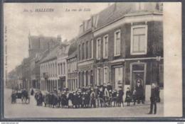 Carte Postale 59. Hallluin La Rue De Lille Trés Beau Plan - Autres Communes