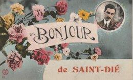 """CPA 88 (Vosges)  SAINT DIE / """" BONJOUR DE ST DIE """" - Saint Die"""