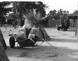 Photo Haute Volta 1980. Charette élémentaire Pour Les Paysans. Photo Du Père Gust Beeckmans - Africa