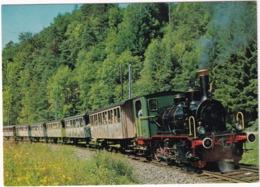 Sihltalbahn (Zürich-Selnau Sihlbrugg) - 'Schnaaggi-Schaaggi' Bummelzügli, Mit Dampflokomotive Nr. 5 - (Schweiz/Suisse) - Treinen