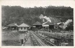 British North Borneo, SABAH SANDAKAN, China Borneo Co., Sawmill, Station (1920s) - Malaysia