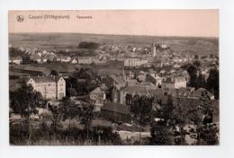 - CPA COUVIN (Belgique) - Panorama 1920 - Edition Eug. Thomas-Dalcq - - Couvin