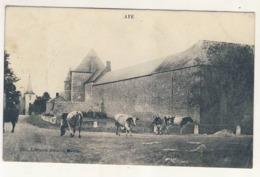 CPA MARCHE-EN-FAMENNE Aye 1907 Château-ferme Bovins - Marche-en-Famenne