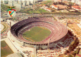 Postcard Stadium Lisboa Portogallo Sporting Lisboa Benfica Stadion Stadio - Estadio - Stade - Sports - Football - Soccer - Fussball