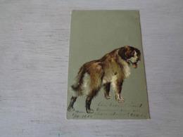 Chien ( 502 )  Hond   Carte Gaufrée  Reliëf - Honden