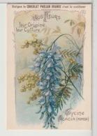 CHROMOS - CHOCOLAT POULAIN ORANGE - Nos Fleurs - Poulain