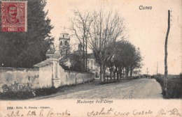CPA Cuneo - Madonna Dell'Olmo - Cuneo
