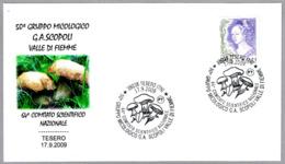 50 Aniv. GRUPO MICOLOGICO - 50 Years Mycological Group. Setas - Mushrooms. Tesero, Trento, 2009 - Hongos