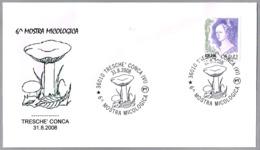 6ª EXPOSICION MICOLOGICA - 6th Mycological Exhibition. Setas - Mushrooms. Tresche Conca, Vicenza, 2008 - Hongos
