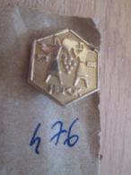 Pas Pin's Mais EPINGLETTE ANNEES 70/80 Origine EUROPE DE L'EST YOUGOSLAVIE : N°476 HEPOK RAISIN VENDANGE - Autres