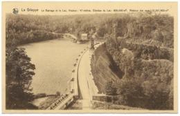 La Gileppe Le Barrage Et Le Lac Unused - Ed Schyns NELS -  Mur De Barrage à Droite - Gileppe (Dam)