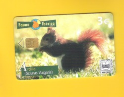 """CHIPCARD SPAIN SERIE FAUNA IBÉRICA """"ARDILLA"""" P531 - EX: 8000 - NEW/NOT USED - Emissions Privées"""