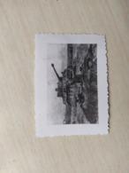 WWII Foto Wehrmacht Panzer  2 WK Photo Tiger - Guerra, Militari