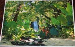 Petit Lot De 3 CPM Polynésie, TAHITI, MOOREA - Polinesia Francese