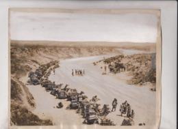 CAMEL CHAMEAUX DROMADAIRES 25*20CM Fonds Victor FORBIN 1864-1947 - Africa
