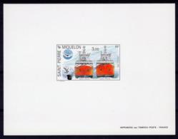 S. Pierre 1990, Ships, St. Denis, St. Pierre, Bird, BF Deluxe - Marine Web-footed Birds