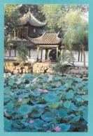 CINA CHINA HUMBLE ADMINISTRATOR'S GARDEN 1994 - Cina