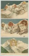 3 Illustrations F. Killinger Sur La Jungfrau . Montagne . - Illustrateurs & Photographes