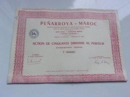 PENARROYA MAROC (casablanca) - Actions & Titres