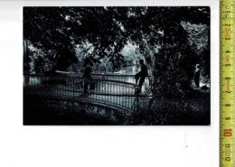 51998 - MARCQ EN BAROEUL LE PONT DANS LE PARC - Marcq En Baroeul