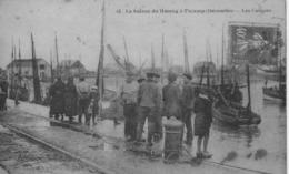 La Saison Du Hareng à Fécamp(déc)-les Caiques.1928. - Fécamp
