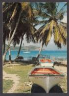 103775/ GUADELOUPE, Îles Des Saintes, Barque Saintoise à *Fond De Curé* - Guadeloupe