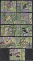 2017 Surinam Suriname Birds Oiseaux Snakes Butterflies 9 Sheets  MNH (missing 3 Sheets) - Surinam