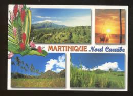 (Martinique) : Saint-Pierre, Anse Céron, La Montagne Pelée - Andere