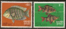 Sri-Lanka  1972   SG  596-7  Fishes  Fine Used - Sri Lanka (Ceylon) (1948-...)