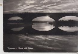 VIGEVANO PONTE DEL TICINO 1955 - Vigevano