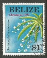 BELIZE. $1 FLOWERS. USED - Belize (1973-...)