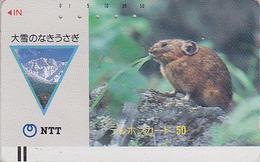 Télécarte Ancienne Japon / NTT 430-022 - ANIMAL - MARMOTTE - MARMOT JAPAN Front Bar Phonecard - Schede Telefoniche