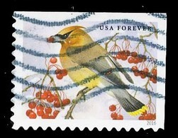 Etats-Unis / United States (Scott No.5127 - Oiseaux Chanteurs / Songbirds In Snow) (o) P2 - United States