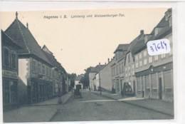 CPA- -37684-67Haguenau -Landweg Und Weissenburger Tor - Sans Frais Acheteur - Haguenau