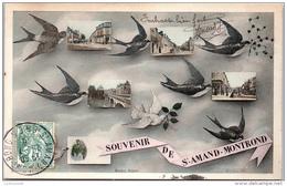 18 SAINT AMAND - Un Souvenir (hirondelle) - Saint-Amand-Montrond