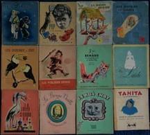Les Petits Père Castor - Lot De 12 Livres - Flammarion . - Livres, BD, Revues