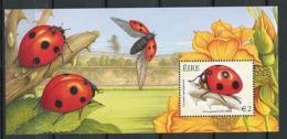 Irlande ** Bloc N° 49 - Insectes - Blocs-feuillets