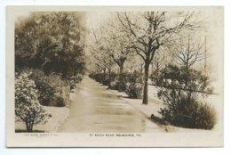 Melbourne - St. Kilda Road - Rose Series P.947 - Melbourne