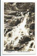 Myer's Creek Falls, Healesville. - Rose Series P.423 - Australia