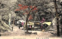 Japan - Maple At Kiyomizu, Kyoto (colors, Animation) - Kyoto