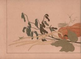 Art Asiatique/ Le Japon Artistique /Siegfried BING/ Gravure/ Charles GILLOT/Marpon & Flammarion/Paris/1888-1891   JAP25 - Estampes & Gravures