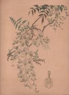 Art Asiatique/ Le Japon Artistique /Siegfried BING/ Gravure/ Charles GILLOT/Marpon & Flammarion/Paris/1888-1891   JAP26 - Estampes & Gravures