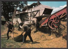 Scènes De La Vie Rurale - Le Battage - Landbouw