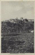 MONTERIDOLFI (FIRENZE) -F/P B/N -VIAGGIATA 1937  -  PANORAMA (150919) - Italia