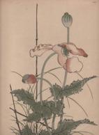 Art Asiatique/ Le Japon Artistique /Siegfried BING/ Gravure/ Charles GILLOT/Marpon & Flammarion/Paris/1888-1891   JAP37 - Estampes & Gravures