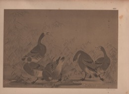 Art Asiatique/ Le Japon Artistique /Siegfried BING/ Gravure/ Charles GILLOT/Marpon & Flammarion/Paris/1888-1891   JAP40 - Estampes & Gravures