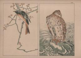 Art Asiatique/ Le Japon Artistique /Siegfried BING/ Gravure/ Charles GILLOT/Marpon & Flammarion/Paris/1888-1891   JAP47 - Estampes & Gravures
