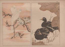 Art Asiatique/ Le Japon Artistique /Siegfried BING/ Gravure/ Charles GILLOT/Marpon & Flammarion/Paris/1888-1891   JAP48 - Estampes & Gravures