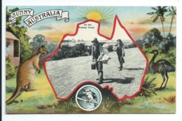 Australia - On The Wallaby Track - Australie